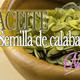 Nutribella - SEMILLA DE CALABAZA