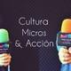 Cultura, micros y acción - programa 131