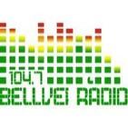 Bellvei Ràdio - L'Informatiu - 30-4-13: 6es Jornades de la Penedesfera