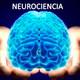 Neurociencia: La resistencia estanca, la aceptación transforma | Dr. Mario Alonso Puig