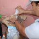 Avanzan acciones de la campaña antivectorial en San Miguel del Padrón