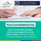 Proyecto de ley cannabis medicinal