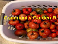 Some tips to grow some Veggies, Update on Farm Bill and pos Veggie Box or not...