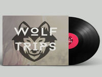 Wolf Trips live at SIDE Festival Como
