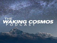 The Rise of Panpsychism - Reality and Consciousness | The Waking Cosmos Podcast