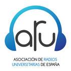 Seminario Radio y Red 2013