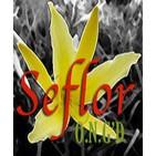 Podcast Seflor - Conferencias y Meditaciones