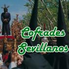Cofrades sevillanos - SÁBANA SANTA - 10-11-16