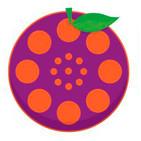 Purple Tangerine