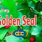 El Ángel de tu Salud - GOLDEN SEAL