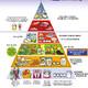 Nutrición: nueva pirámide alimenticia