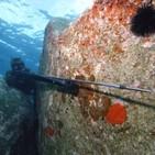 El fusil de pesca submarina