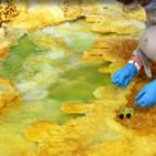 BioBalears 125 - Hay vida en el lugar más extremo de la Tierra