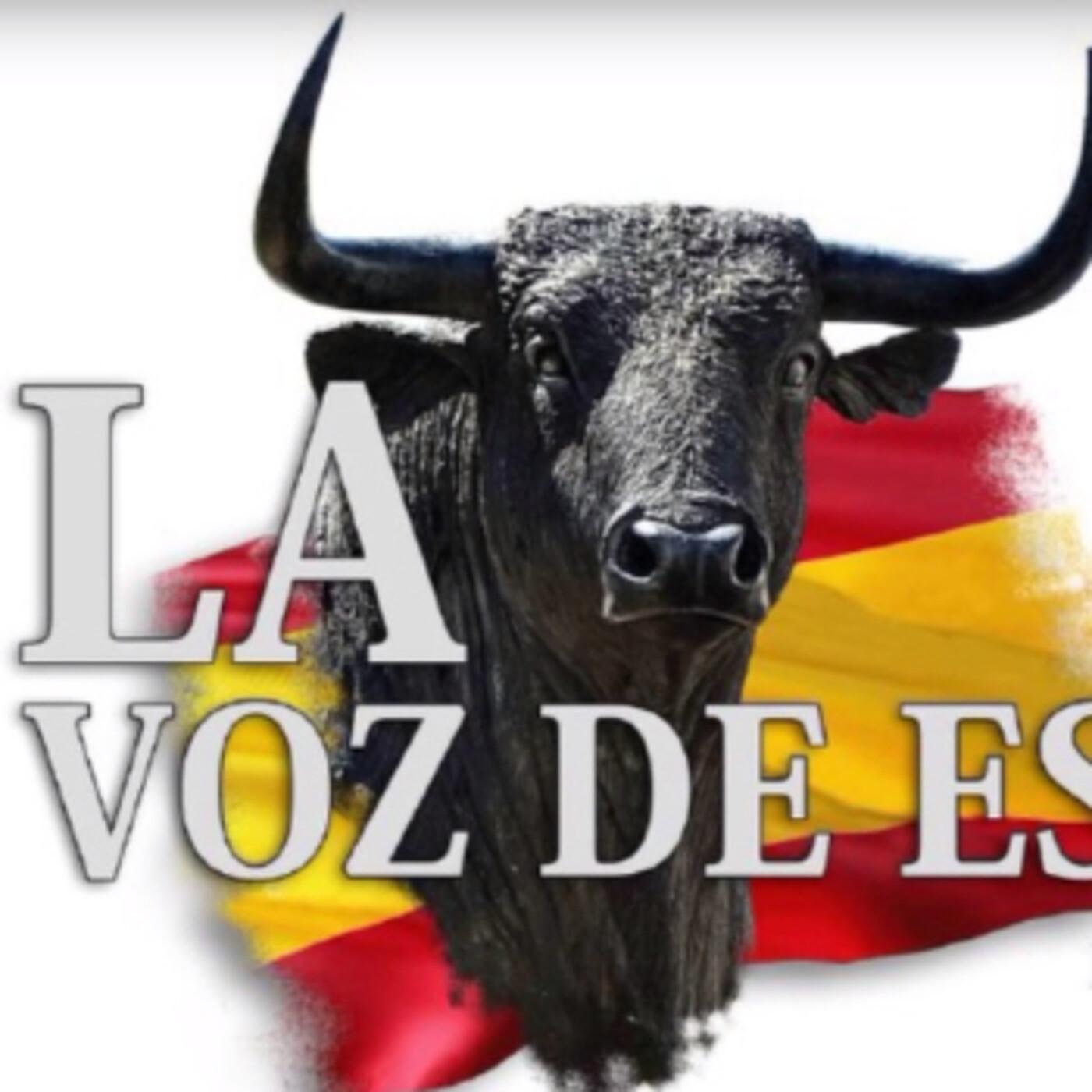 LA VOZ DE ESPAÑA Ed: 252 (25 de Junio)