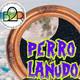El Perro Lanudo - Episodio 14 - Sabadarks