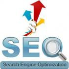 Increase 60% traffic with seo services India