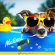 Matinal MDT Radio 273 18-06-19