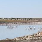 Humedales de La Mancha