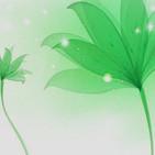 Meditación Verde. Ambiente bosque Asmr, sonidos de la naturaleza