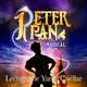 Cap. 17-Peter Pan: Cuando Wendy se hizo mayor (FINAL)