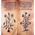 Medicina y Alquimia:El Legado Científico del Mundo Árabe