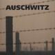 Auschwitz - Memorias del recluso Nº 1327