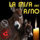 La Misa del Asno - (17-07-2020) - Red Apoyo San José