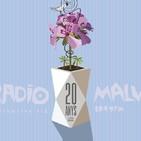 Maratón XX años Radio Malva: Campos electrosemántcios