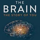 127 - El Cerebro (Tu Historia)
