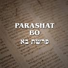 Parashat Bo - 2020