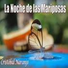 La Noche de las Mariposas (25 de Junio de 2015)