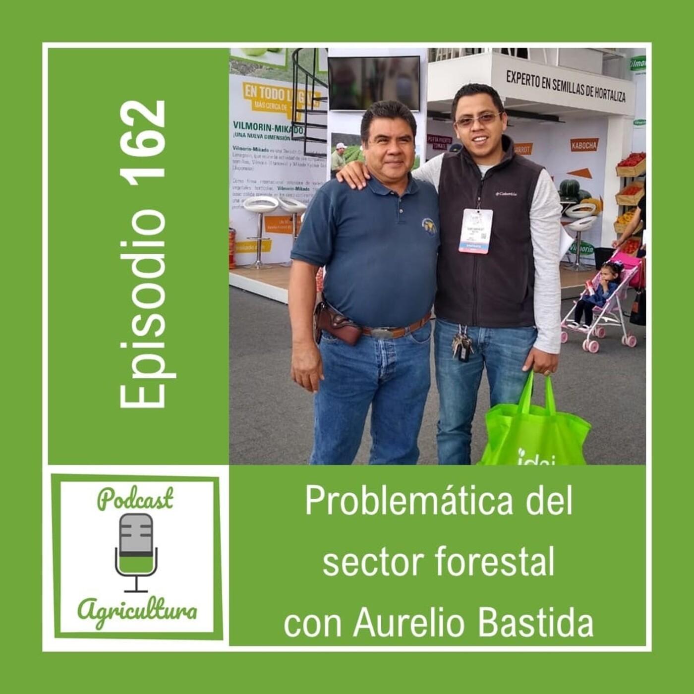 162 Problemática del sector forestal con Aurelio Bastida