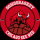 Chicago See Red Podcast (2)