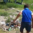 Problemas medioambientales de Manatí