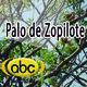 El Ángel de tu Salud -PALO DE ZOPILOTE