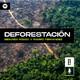Podcast #6 Deforestación