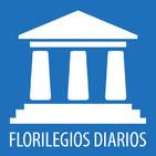 FT - Madurez política