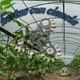 Hortas con ciencia (programa1)