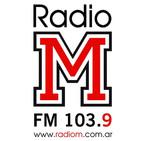 Nuevo Modelo de Empresas   Entrevista en Radio M