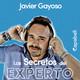 Los Secretos del Experto - Javier Gayoso