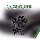 El Ángel de tu Salud - CONDROITINA