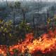 Brasil: Incendios criminales en la Amazonía