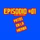 Patos en la Hierba - Episodio #001 - Los patos