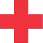 ENIGMAS EXPRESS: El origen de la Cruz Roja