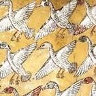 Billetes de ida: Como aves migratorias