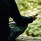 Meditación Guiada: Atención focalizada en las sensaciones corporales y la respiración (José Manuel Martínez Sánchez)