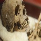 Las momias coptas de Antinoópolis