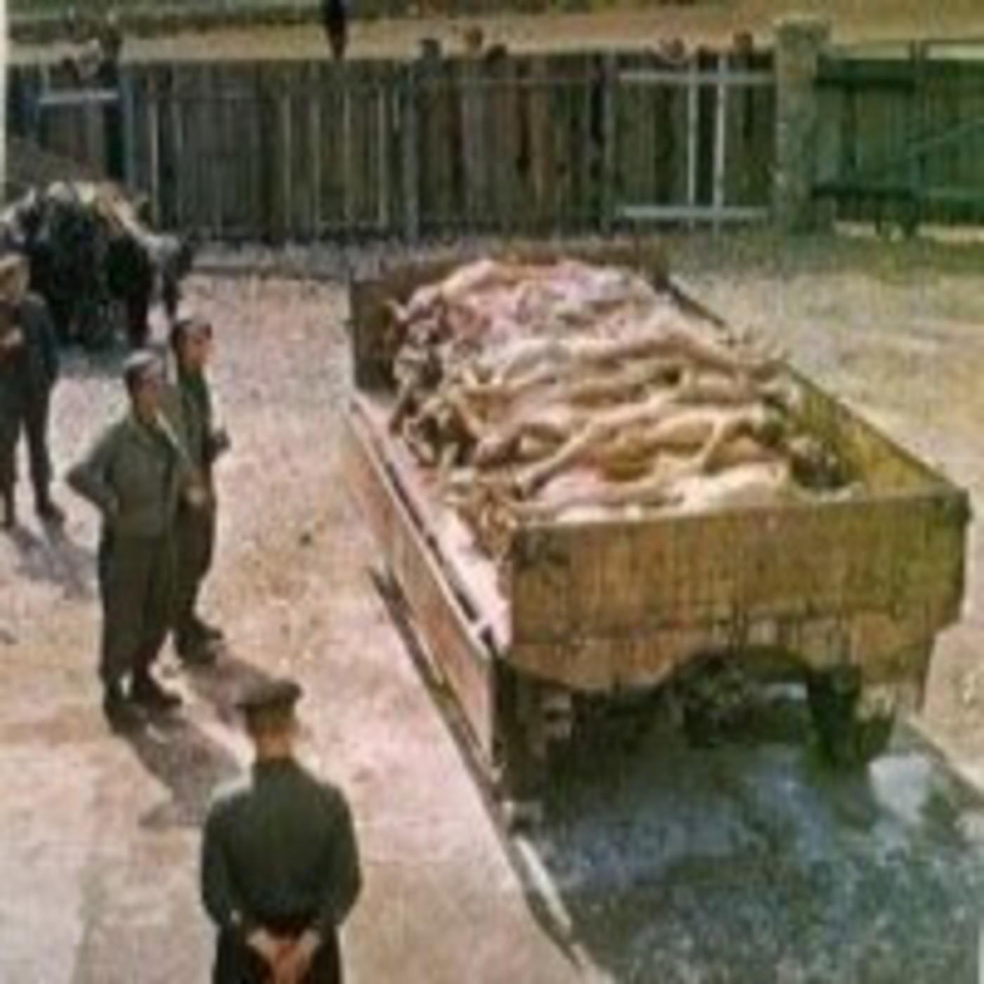 Los campos de concentración Nazis al descubierto