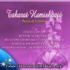 Leyes de pureza de la familia -Taharat hamishpajá-