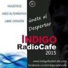 ¿Pues qué rayos es Indigo Radio Cafe? Bienvenida a la temporada 2015.